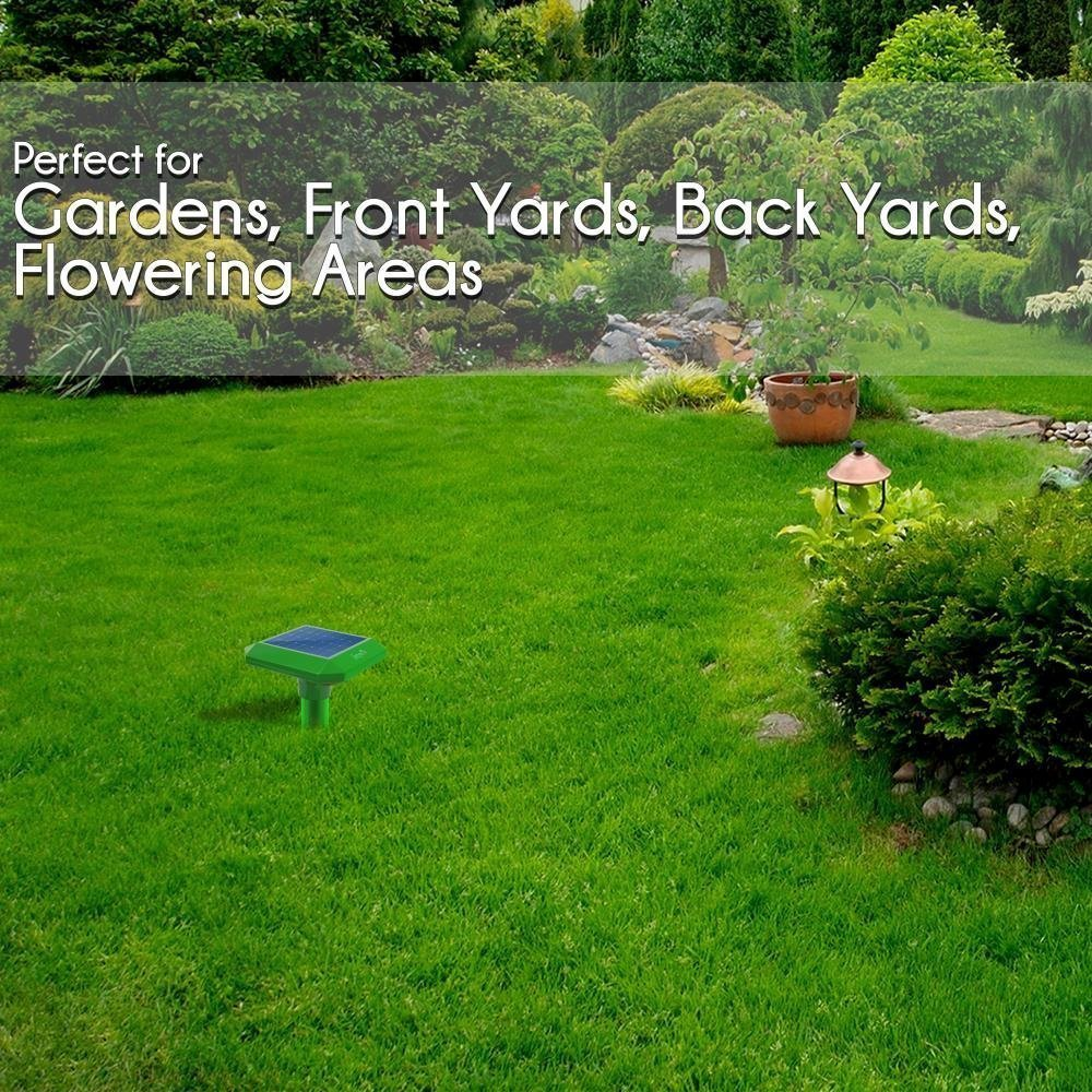 Gopher In Backyard: Powered Outdoor Ultrasonic Vibration Repel