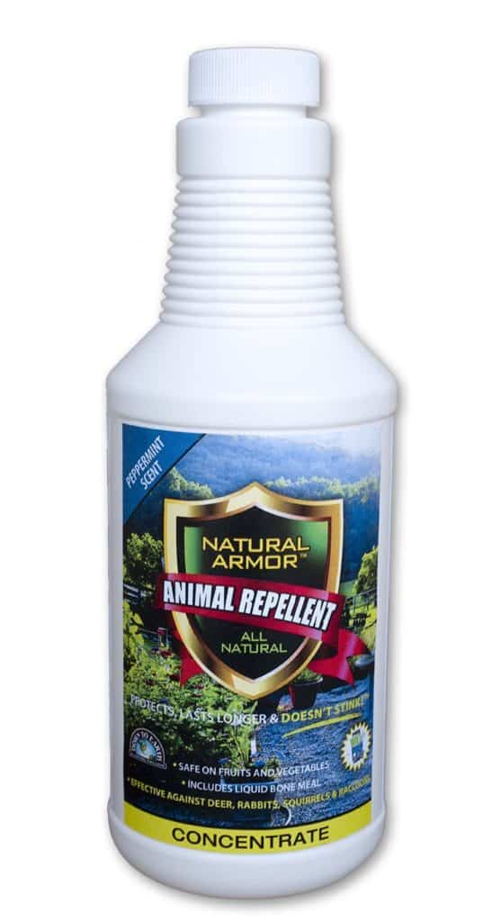 Repellent Spray for Rodents & Animals. Cats, Rats, Squirrels, Mouse & Deer. Repeller & Deterrent for Dogs, Critters, Mice, Raccoon & Skunk. Natural Armor Peppermint Pint Concentrate