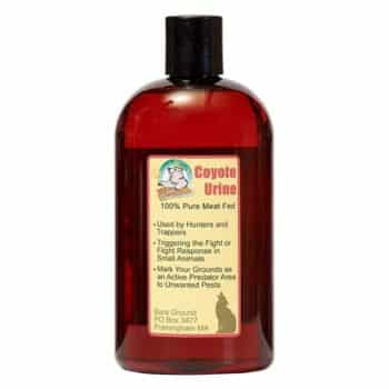 Groundhog Deterrent Home Remedies, Groundhog Deterrent Home Remedies