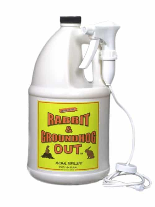 Rabbit & Groundhog Repellent: Rabbit Out 1 Gallon Ready-To-Use