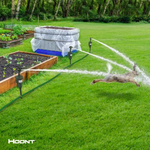 Hoont Cobra Powerful Outdoor Water Jet Blaster Animal Pest Repeller, Motion Activated , Expels Cats, Dogs, Squirrels, Birds, Deer, Etc. Out of Your Property (Upgraded Version)