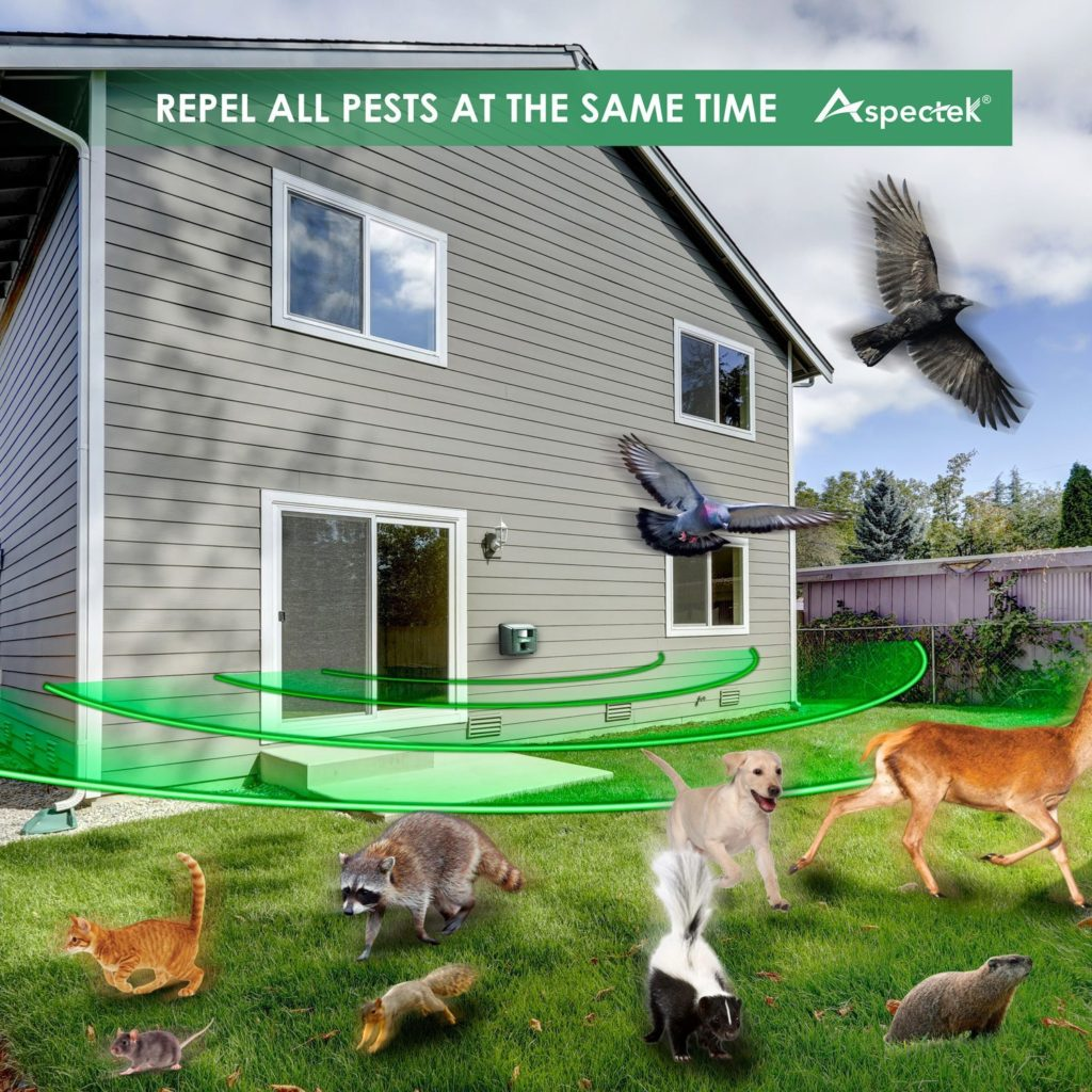 Outdoor Electronic Pest Animal Ultrasonic Repeller
