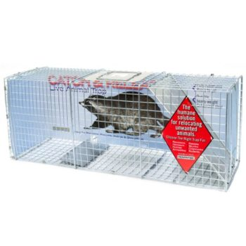 How To Make A Groundhog Trap, How To Make A Groundhog Trap