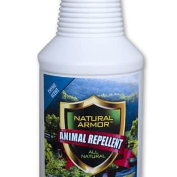Repellent Spray for Rodents & Animals. Cats, Rats, Squirrels, Mouse & Deer. Repeller & Deterrent For Dogs, Critters, Mice, Raccoon & Skunk. Natural Armor Thyme Pint Concentrate