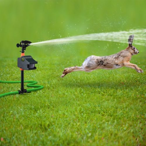 Hoont8482 Powerful Outdoor Water Jet Blaster Animal Pest Repeller – Motion Activated - Blasts Cats, Dogs, Squirrels, Birds, Deer, Etc. Out of Your Property