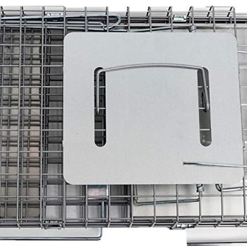 Animal Trap - Best Humane Animal Trap for Gophers, Racoons, Possums, Groundhogs, Beavers and Other Similar Sized Animals. Easy Trap Catch & Release cage with 1-Door by LifeSupplyUSA