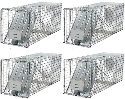 Havahart 1079 Large 1-Door Humane Animal Trap for Raccoons, Cats, Groundhogs, Opossums (Pack of 4)
